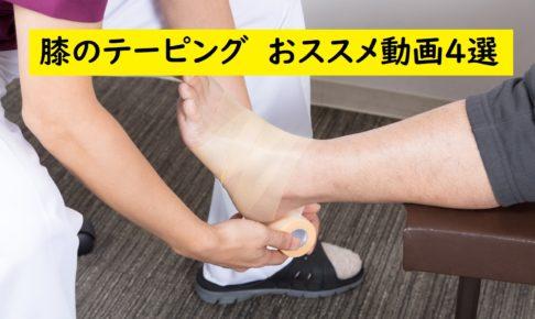 膝のキャッチの画像