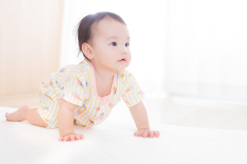 赤ちゃんはいはいの画像