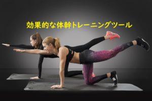 体幹トレーニングツールの画像